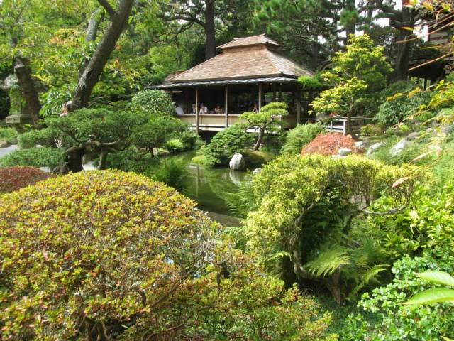 Japanese Tea Gardens, Golden Gate Park